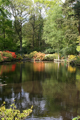 IMG 9112 ©Memories Photography 