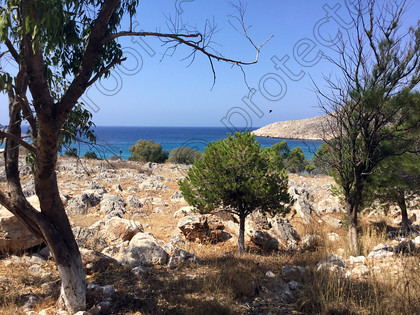 2015-07-21-10.53.40 ©Memories-Photography 